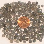 Ali Rand Mexico Distrito Federal Beads Parcel Gray Cone