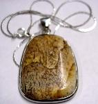 Earth Treasures USA Massachusetts 39 Mm Long 29 Mm Wide Picture Jasper Pendant With Chain