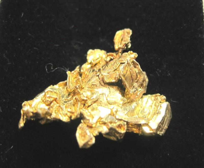 Earth Treasures États-Unis Massachusetts Minerals Gold Yellow Miniature