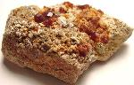 Earth Treasures USA Massachusetts 2.5 Long 3 Oz. Spessartine Garnet Rare Mineral Specimen